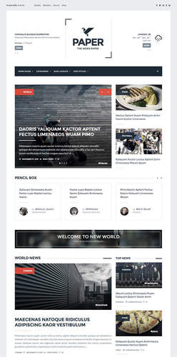 cheap newspaper wordpress theme
