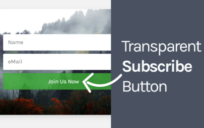 How To Make Subscribe Button Transparent Using CSS