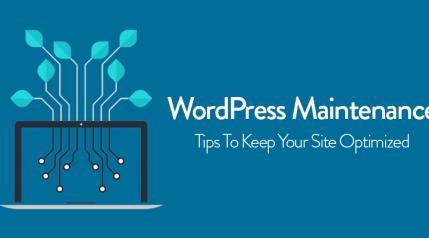 wordpress maintenance tips