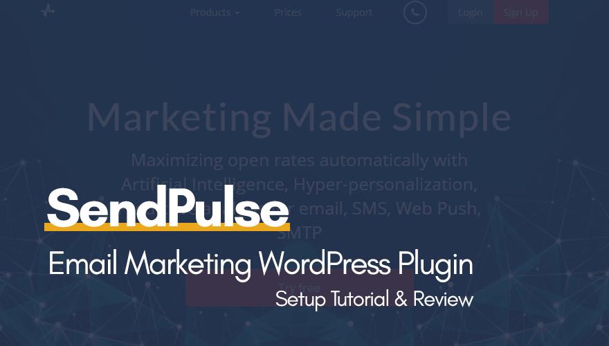 setup plugin in wordpress